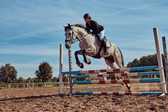 cours équitation en groupe
