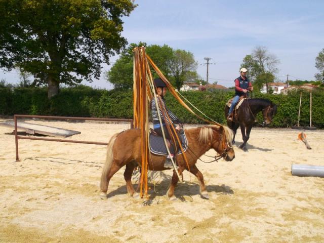 Cours équitation pour enfants à partir de 6 ans et  jusqu'à l'âge adulte